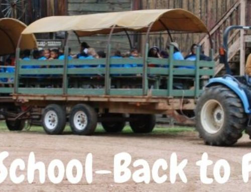 Back to School Means Back to Field Trips