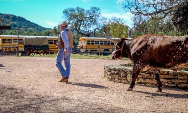 Field Trips at Enchanted Springs Ranch