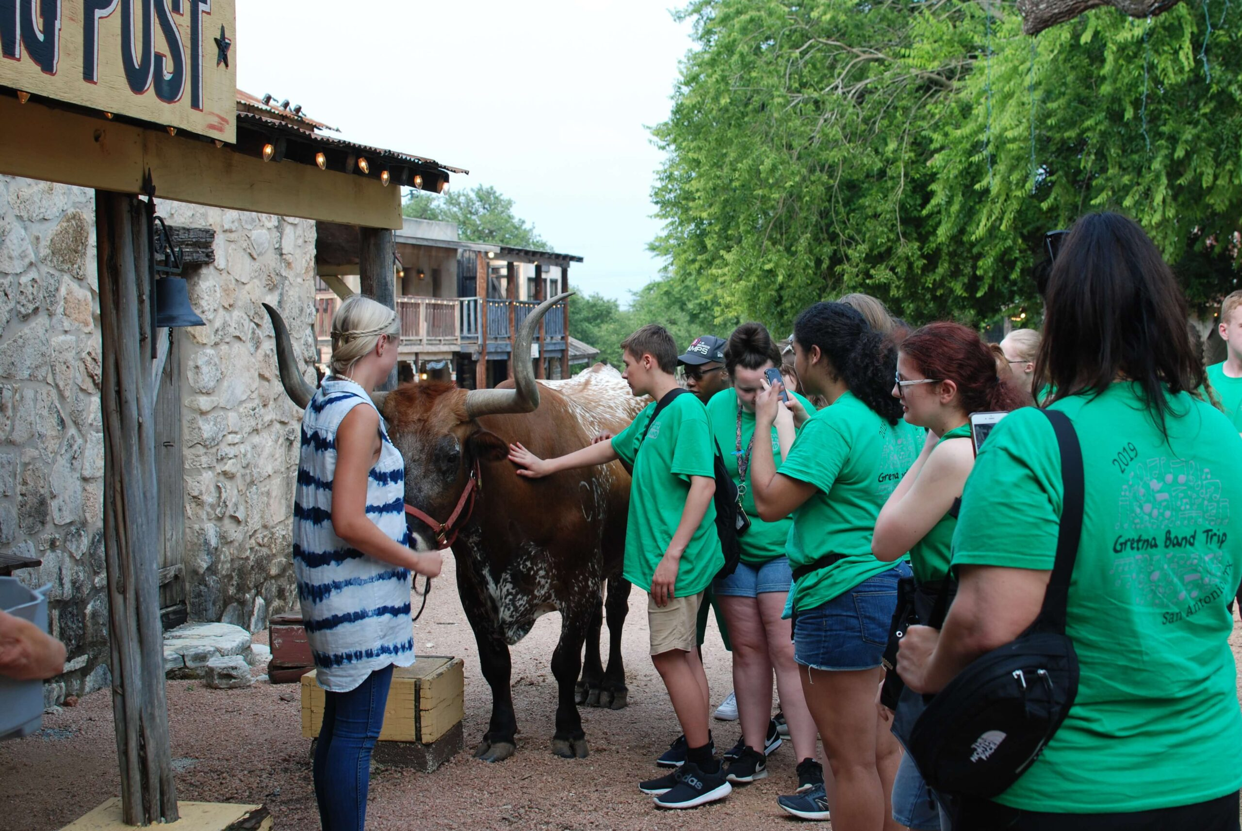 Meet and Greet with Woodrow the Texas Longhorn