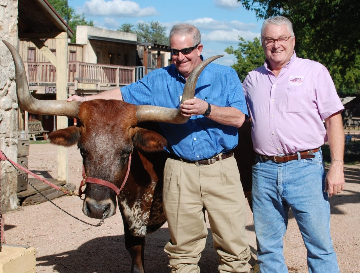 Guests enjoying a meet and greet with a longhorn during a corporate cocktail hour at Enchanted Springs Ranch