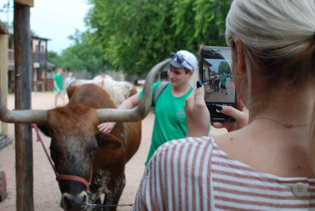 Take a photo with a real longhorn! Get up close and personal with Woodrow the Texas Longhorn.