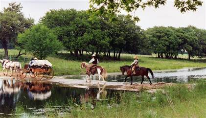 A film production riding horseback with carriages at Enchanted Springs Ranch